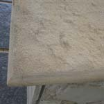 Pool Coping (Bullnose) Mint Bullnose two side Supplier,Exporter,India